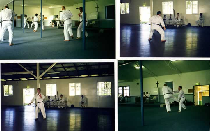 Larry Friedberg Kobudo and Karate Grading