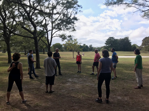 tai chi large class in centennial park 2018